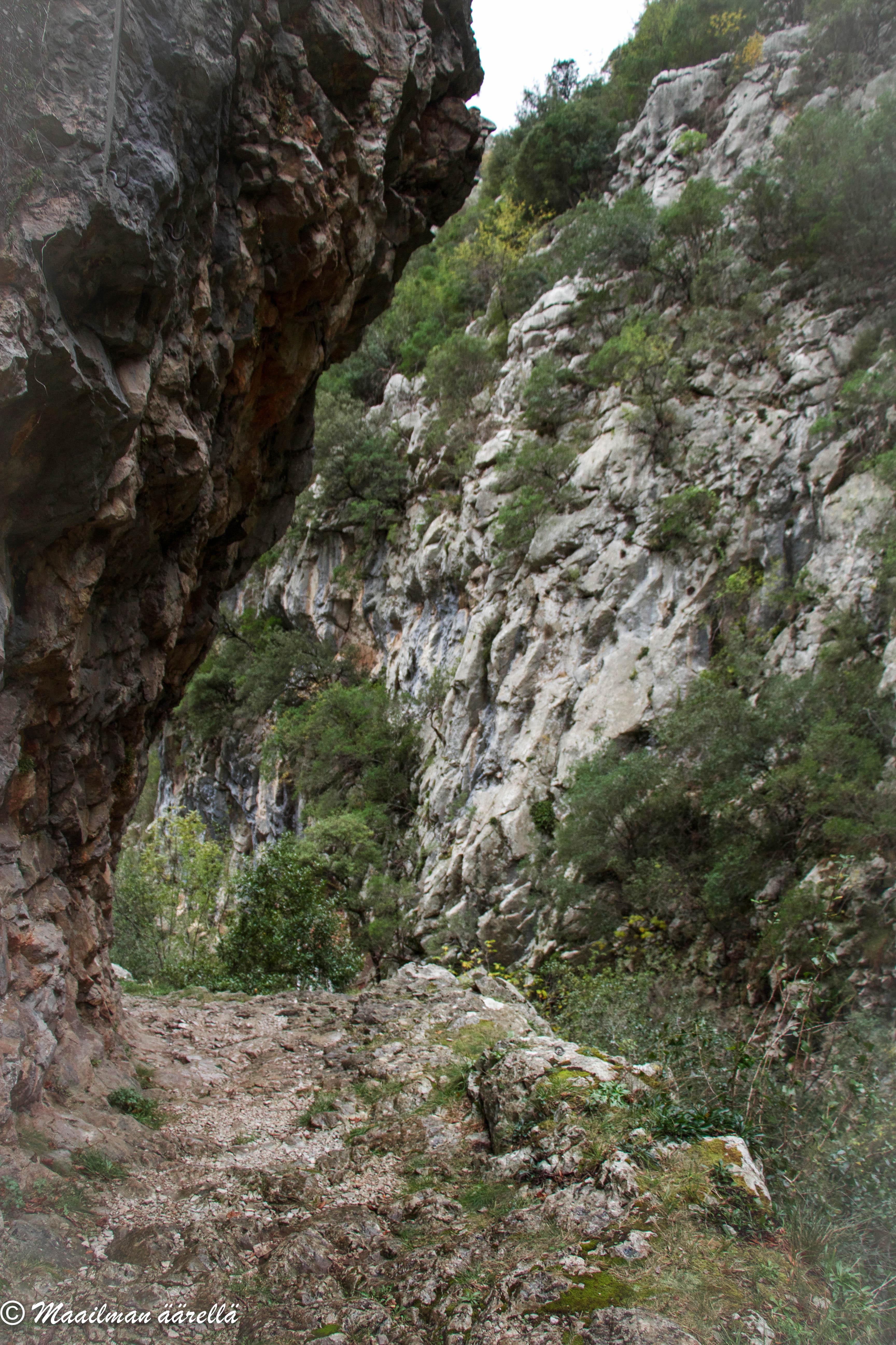 Asturias_2015-6