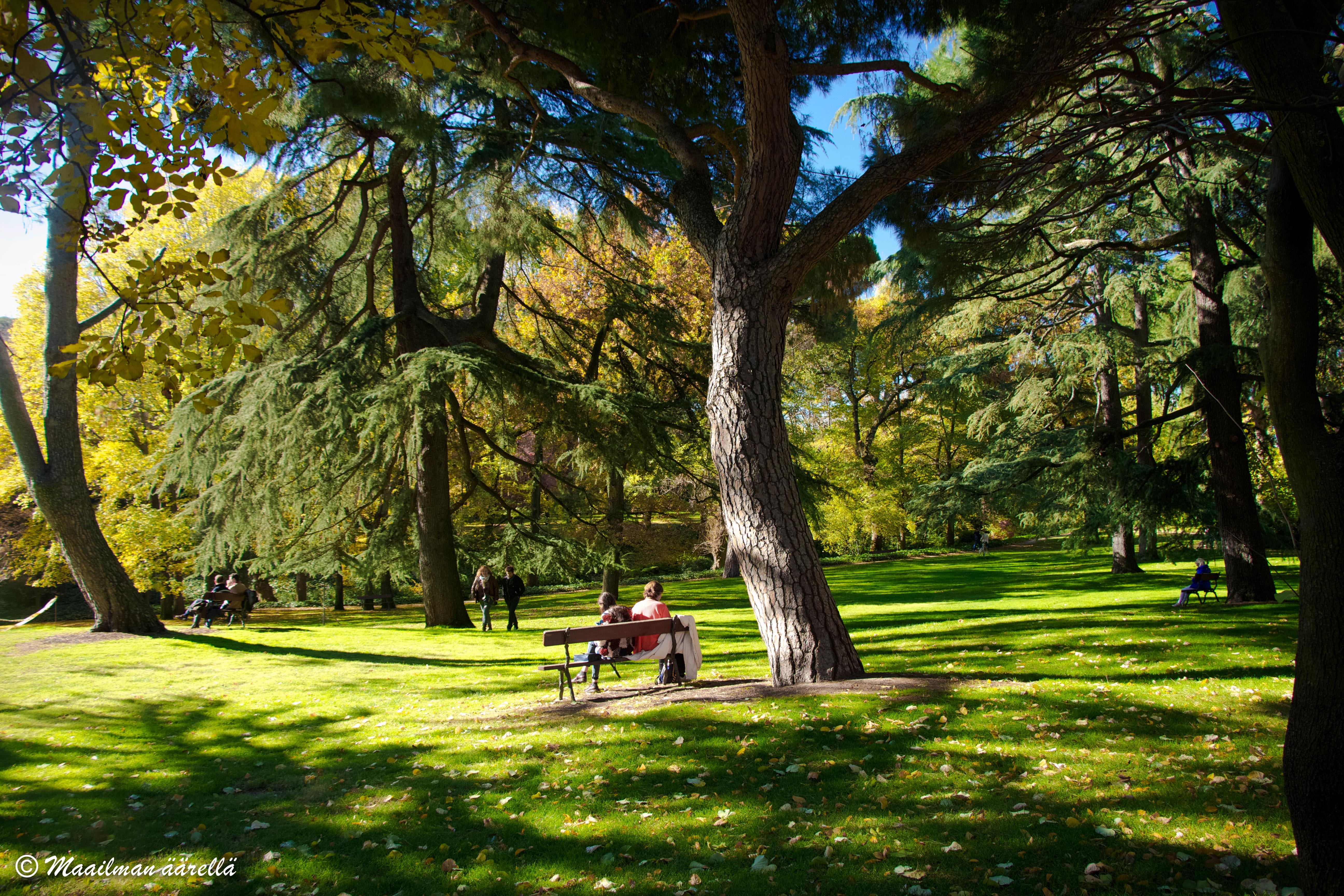 Capricho-puistossa Madridissa