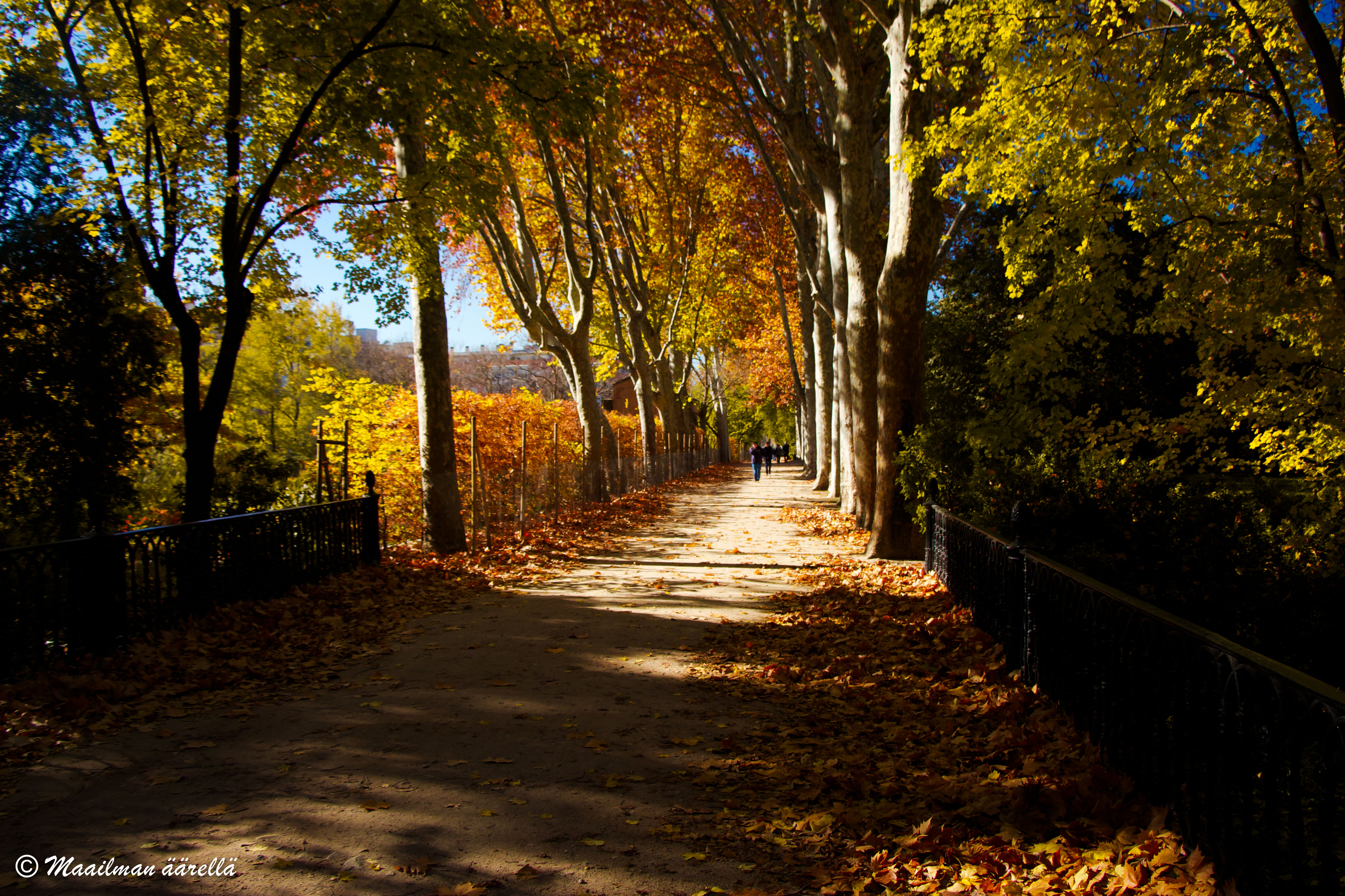 Capricho-puisto Madridissa