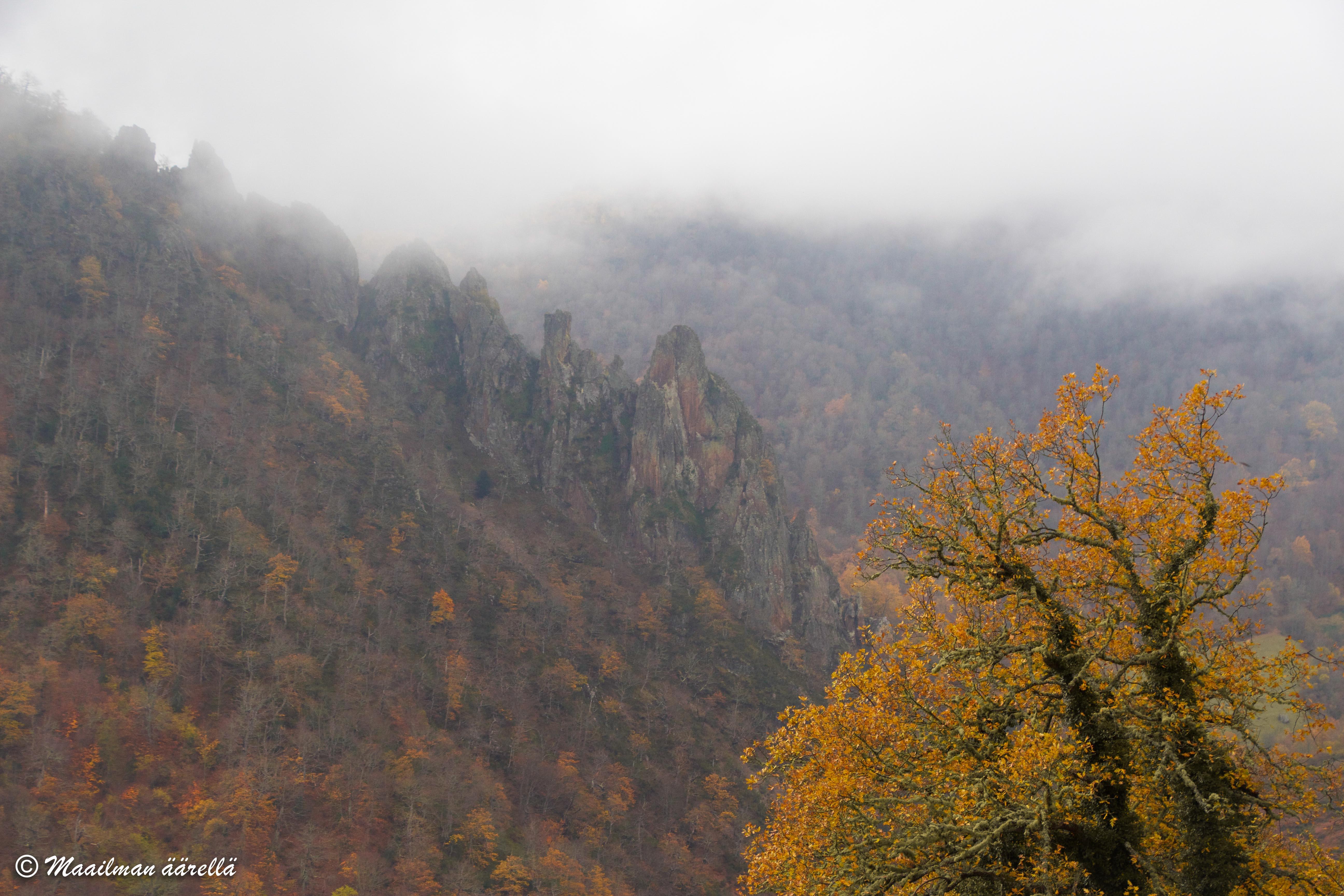 Picos_de_Europa-1-15