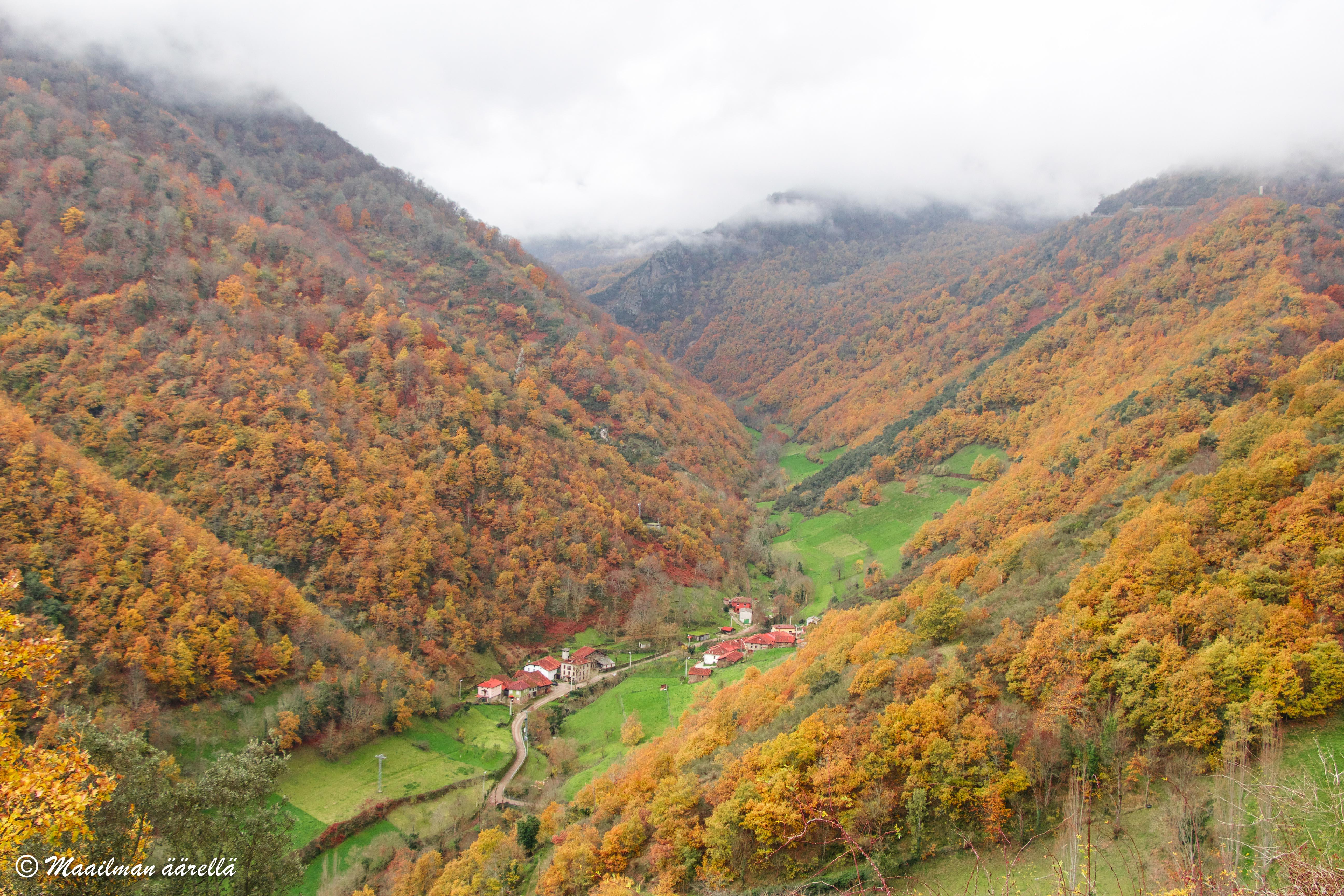 Picos_de_Europa-1-16