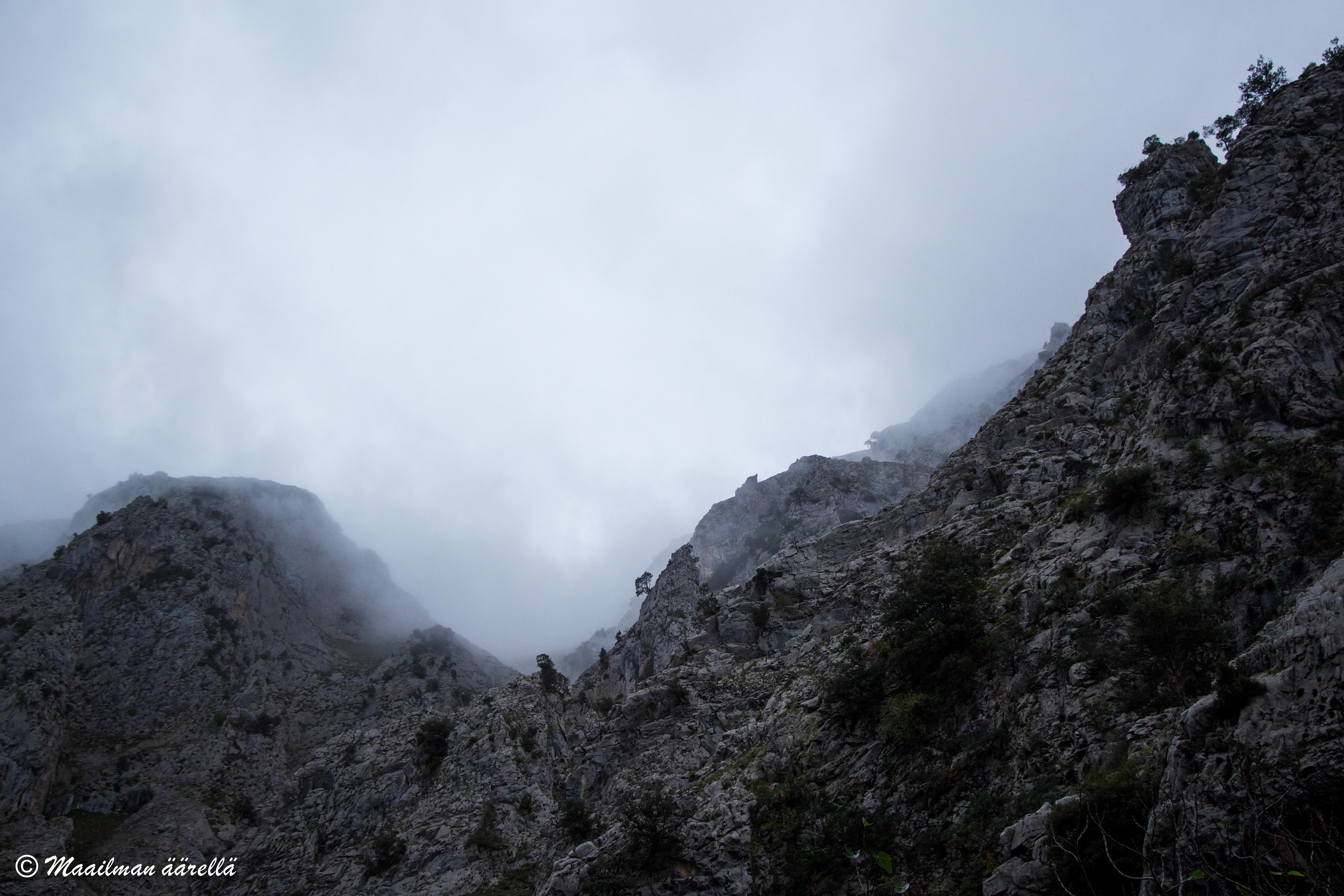 Picos_de_Europa-1-17