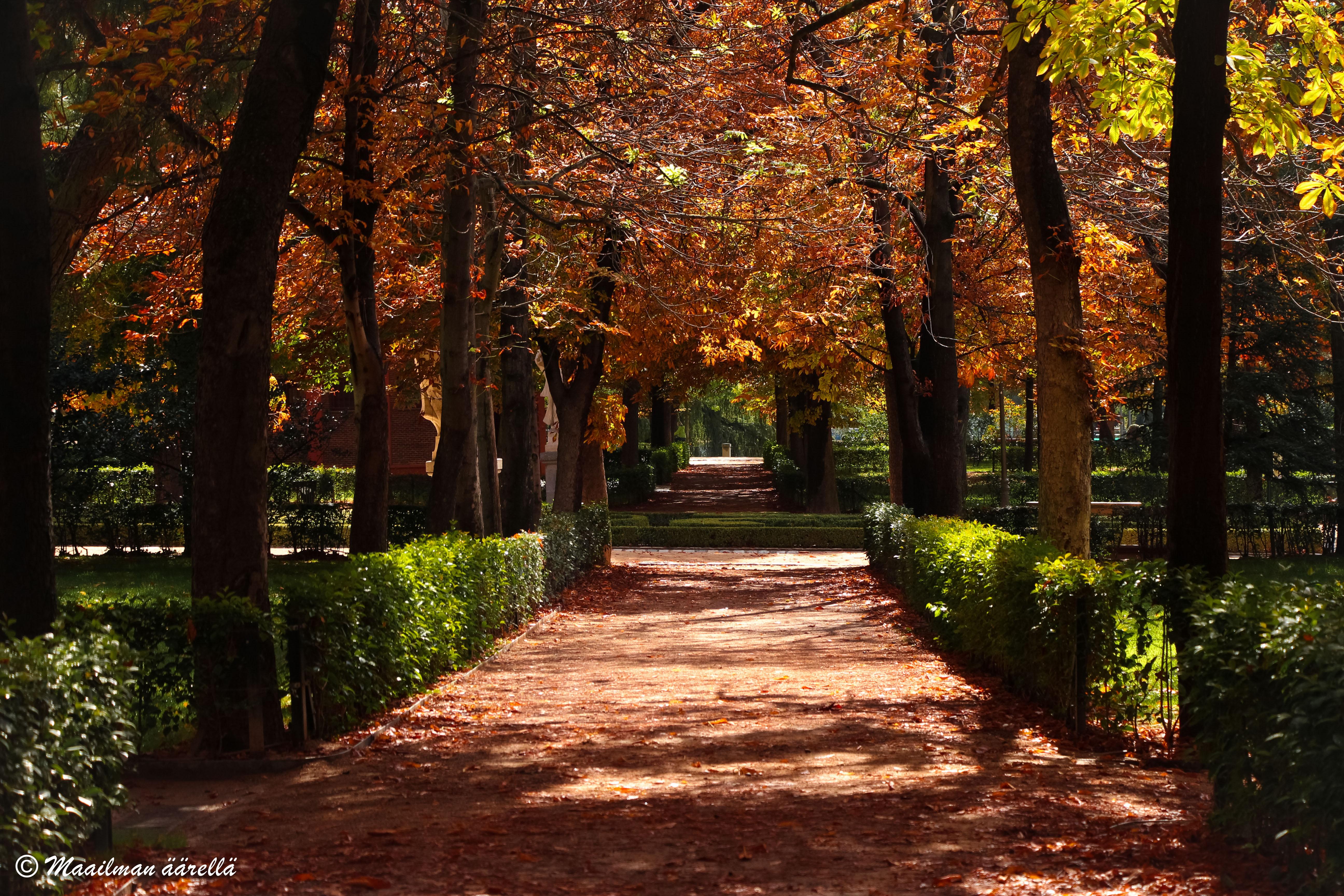 Retiron puisto Madridissa