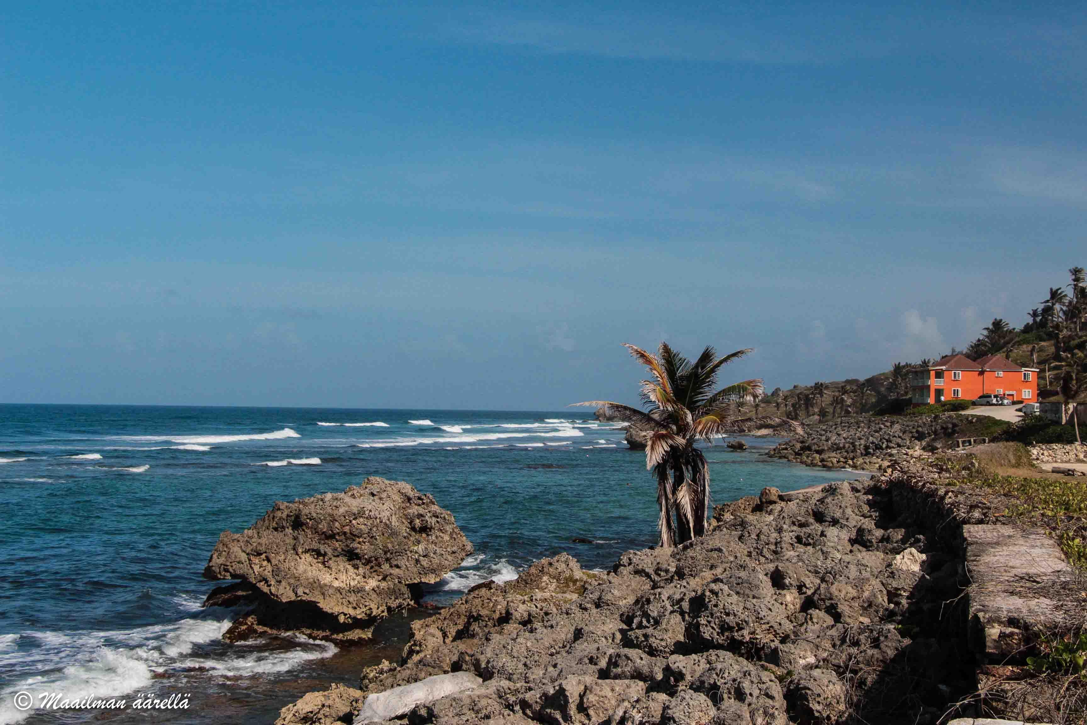 Barbados Bathseba