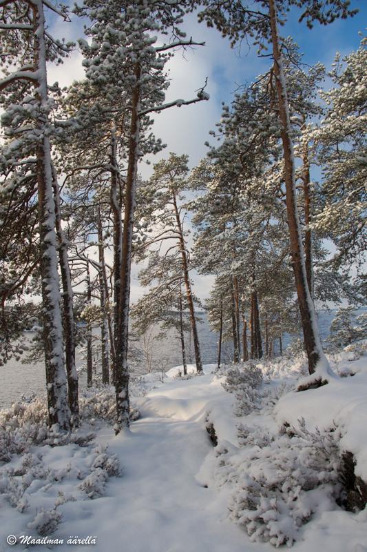 talvi Savonlinna