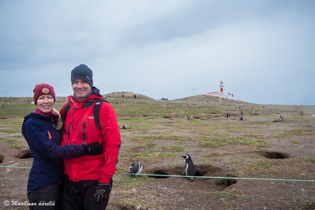 pingviinisaarella