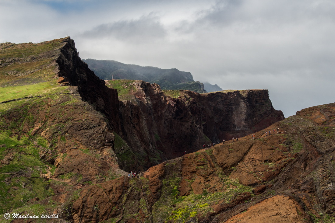 Madeira_luonto