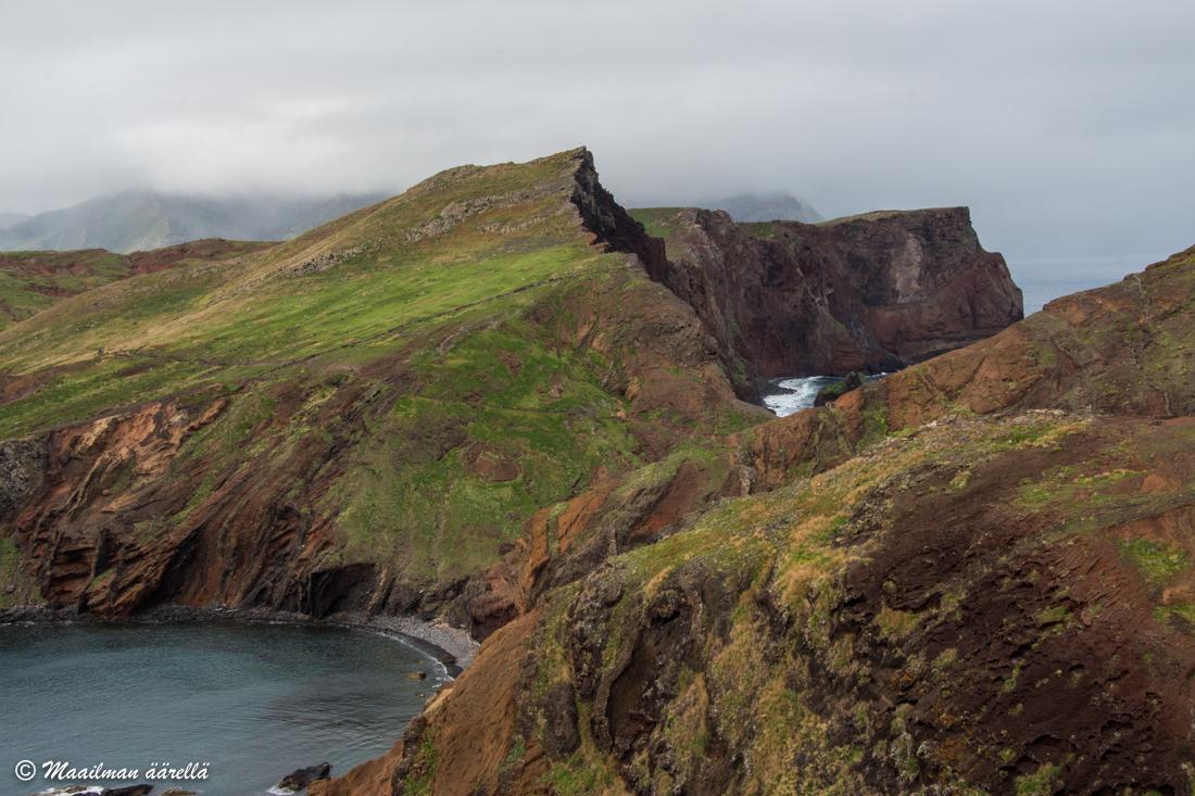 Madeira patikointi