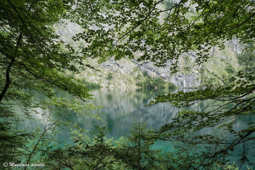 Saksa_kansallispuisto