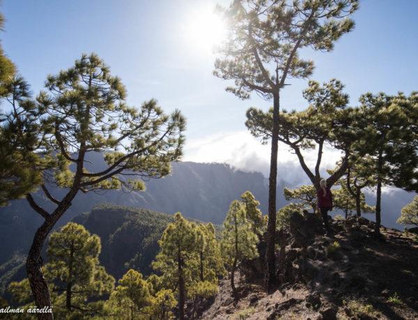La Palma patikointi