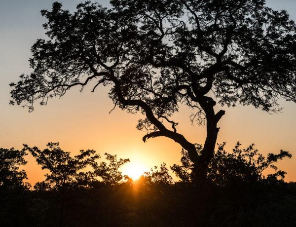 auringonlasku_etela_afrikka
