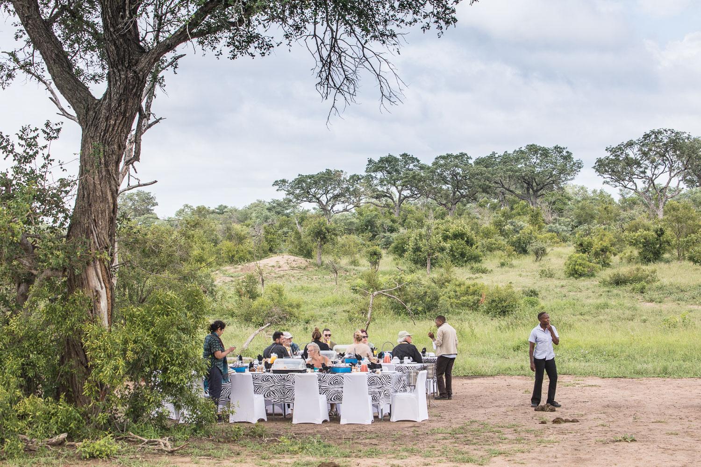 safari_aamupala