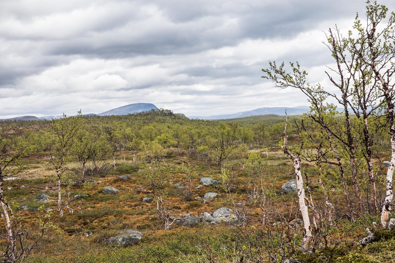 Mallan luonnonpuisto