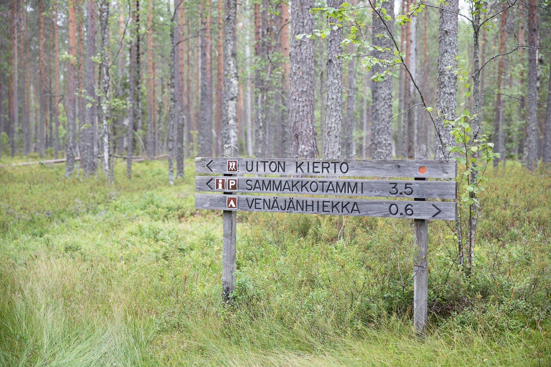 Tiilikkajarven_kansallispuisto