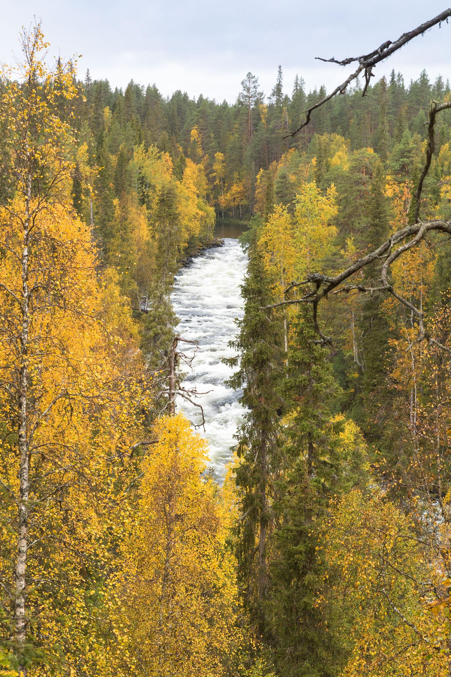 Kuusamo_Aallokkokoski