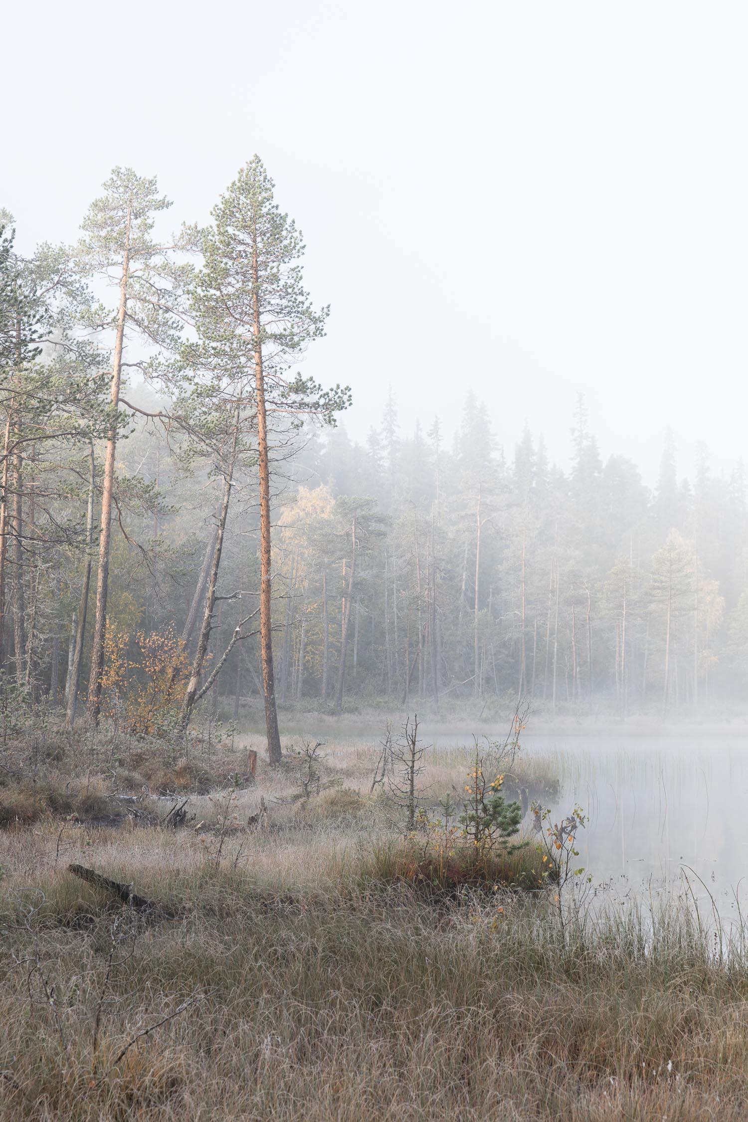 Pahkanakallio_lampi_Kuusamo