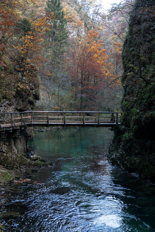 Vintgar_Gorge_Slovenia