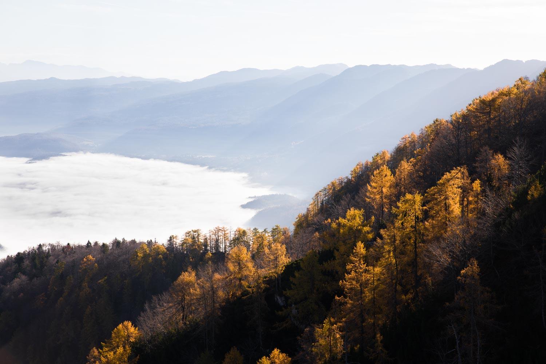 Bohinj_Slovenia_Vogel