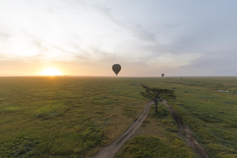 Tansania Serengetin kansallispuisto