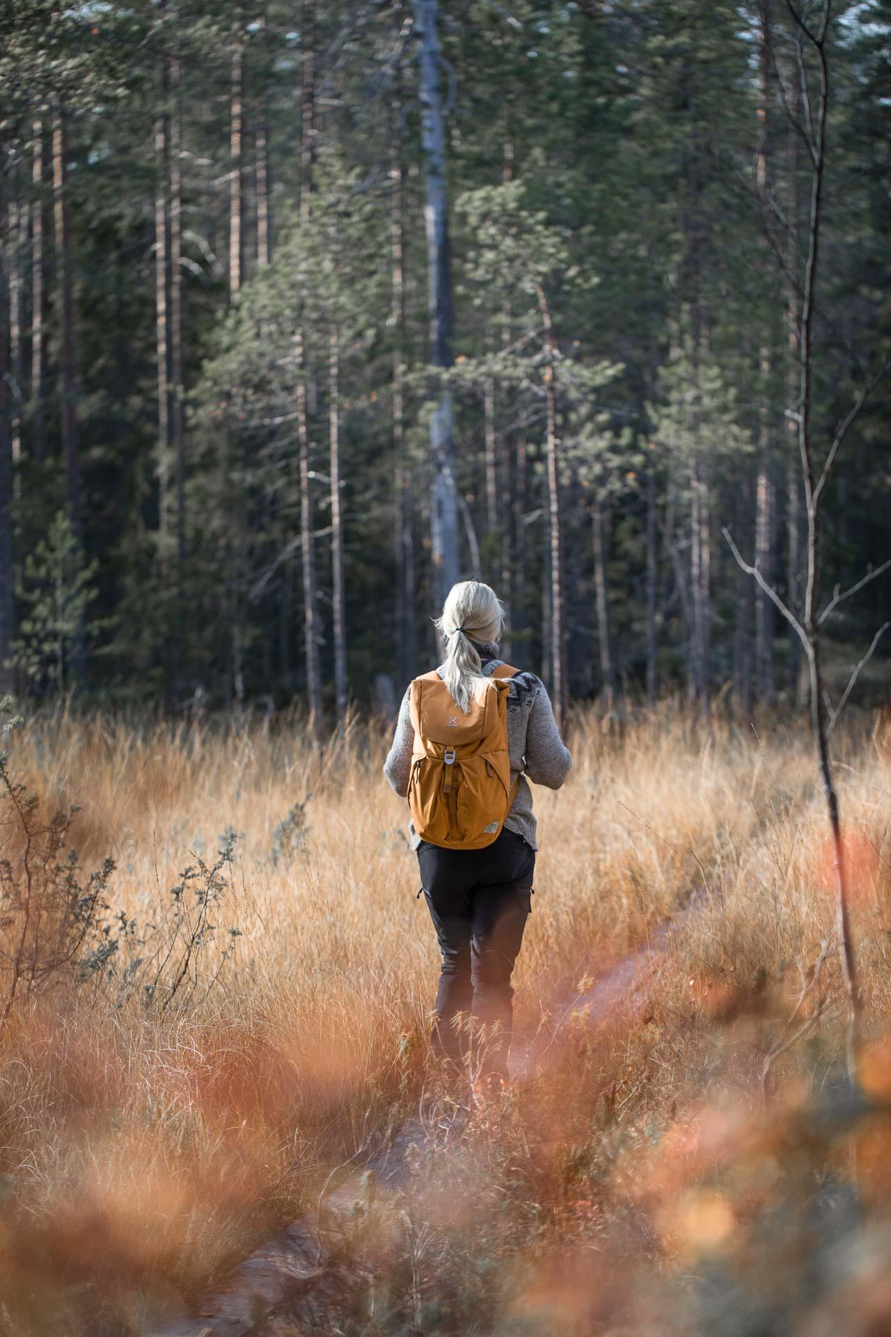 Hiidenportin_kansallispuisto