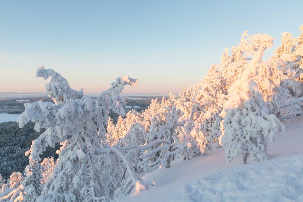 lumikenkaily Kuusamo