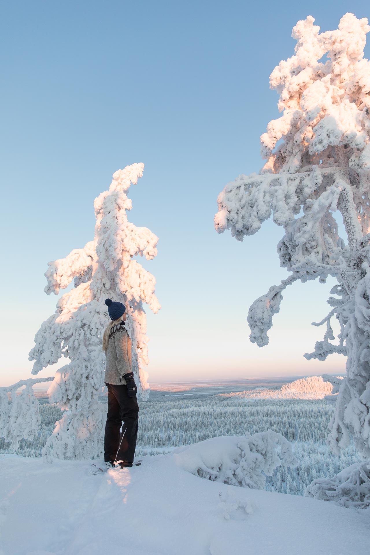Konttainen talvi