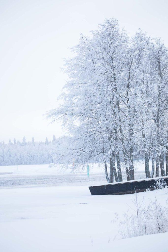 Riihisaari_Savonlinna