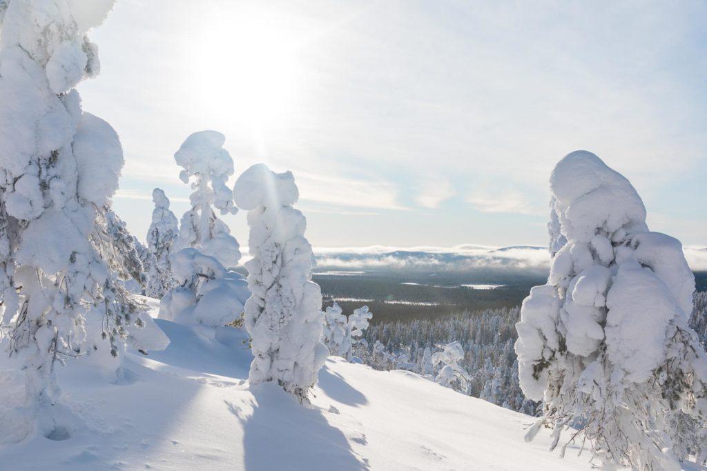 Soutaja-tunturi Pyhä-Luosto lumikenkäily